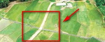 分隔明显的田地