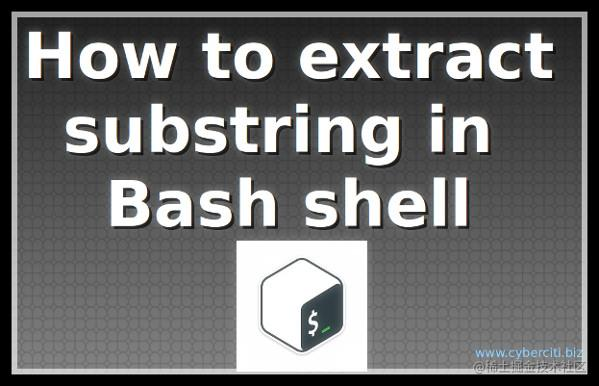 How to Extract substring in Bash Shell on Linux or Unix
