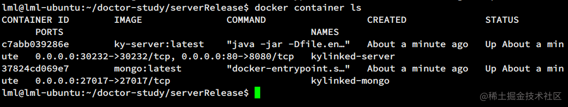 Docker 容器运行状态