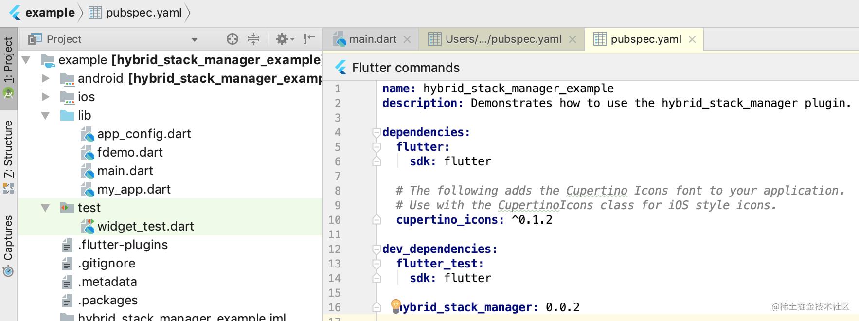 dart-pub-dependency-management-name+version