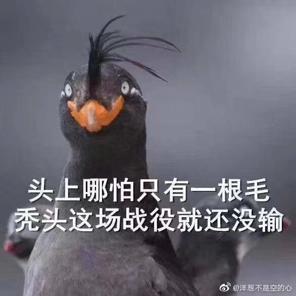 jiaoery于2019-11-11 11:29发布的图片