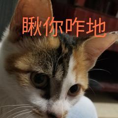 九韦于2019-11-28 15:01发布的图片