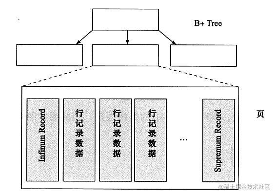 B+树页结构