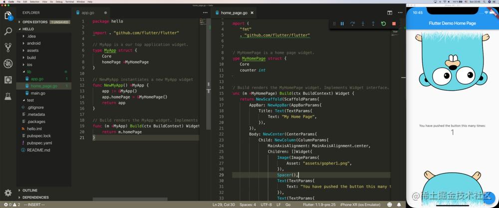 VSCode 中 Go 版的 Flutter
