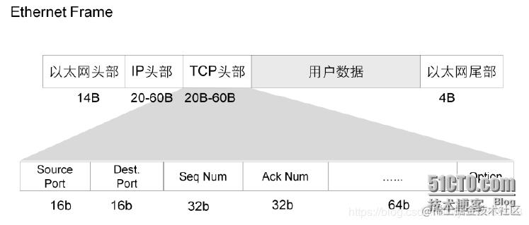 TCP数据格式